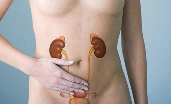 5 signálů, že vám špatně fungují ledviny